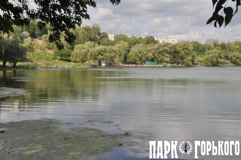пляжи харькова и харьковской области фото